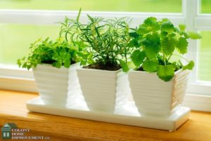 Build an herb garden into your kitchen remodeling.